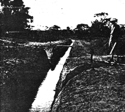 Figure 7. A drain in central Africa cut to dry a swamp which Bred Anopheles